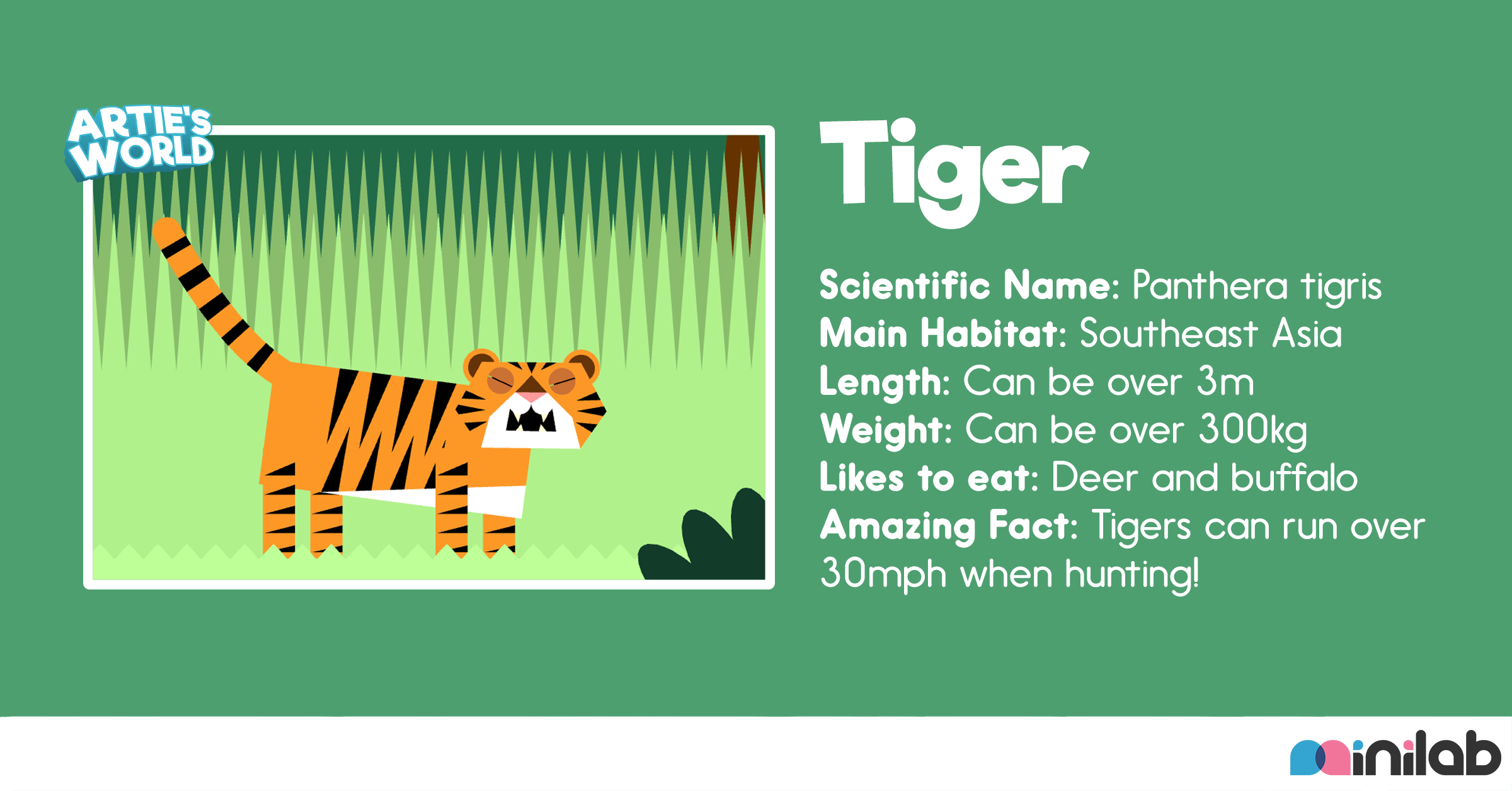 Tiger from Artie's World Jungle Journey